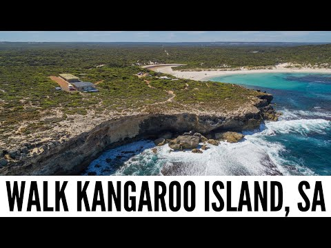 Explore Kangaroo Island - The Big Bus tour and travel guide