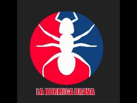 La Hormiga Brava - El Divorcio.