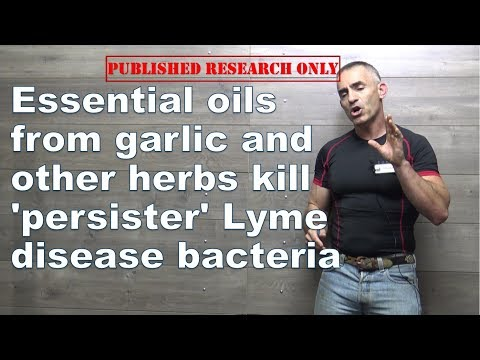 essential-oils-from-garlic-and-other-herbs-kill-'persister'-lyme-disease-bacteria