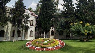Турция отель Квинс парк Гейнюк Gueens park gounuk 5 Обзор номера dzyba julia