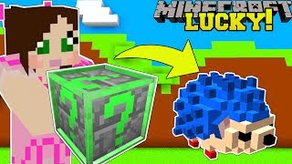 Minecraft: LUCKY BLOCK SIMULATOR!!! (OPEN BLOCKS & EARN INSANE MONEY & PETS!) Modded Mini-Game