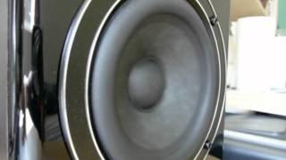 Swans/HiVi D1080MkII Speakers + Beresford DAC