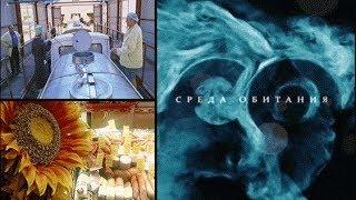 Продукты бывшего СССР - Среда обитания | Документальный фильм