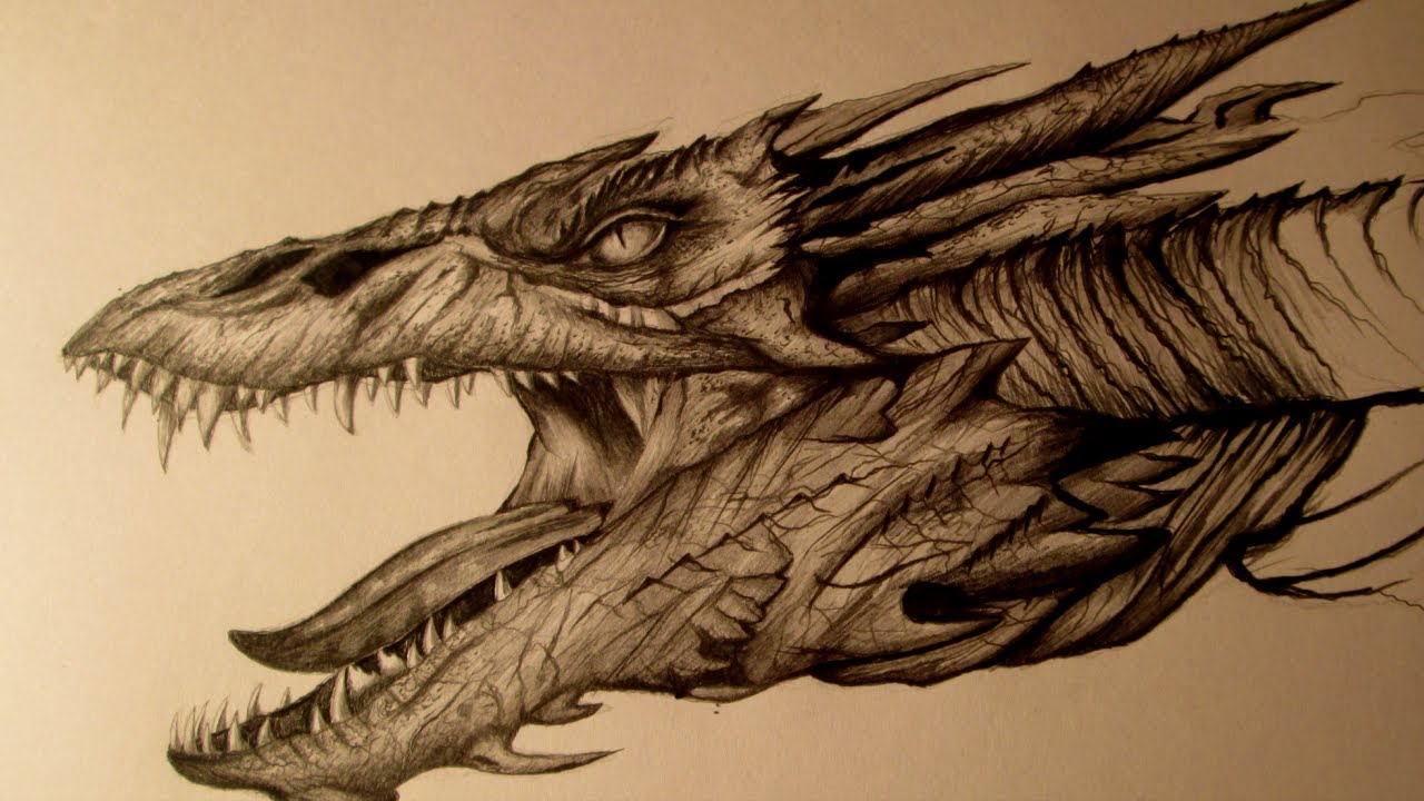 Gallery For gt Smaug Drawing