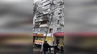 Чудесное спасение кошки. г. Ростов-на-Дону(25.01.2019)