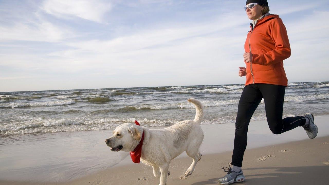Resultado de imagen de Running with Dog