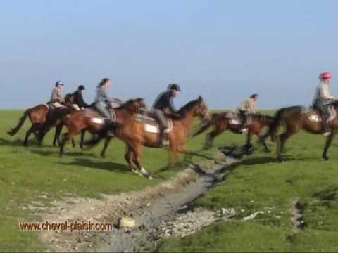 Randonnee equestre dans la Baie du Mont Saint Michel avec les chevaux de CHEVAL PLAISIR