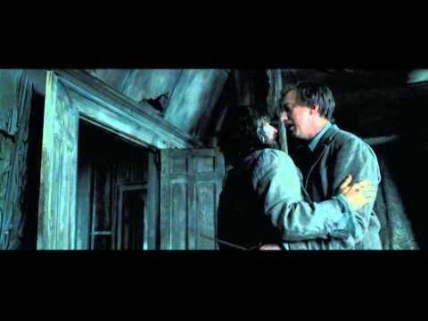 Prisoner of Azkaban- Sirius Black.