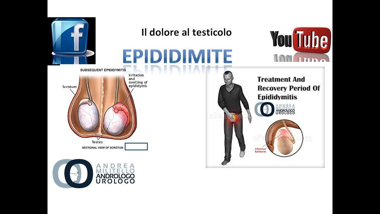 infiammazione prostata e dolore ai testicoli