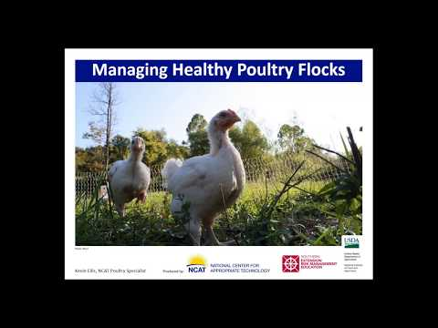 Biosecurity for Pastured and Organic Poultry