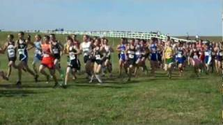 State Cross Country Race