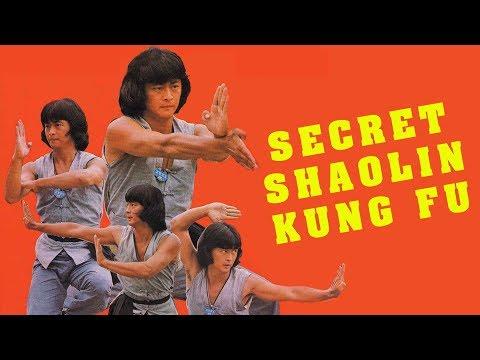 Wu Tang Collection - Secret Shaolin Kung Fu
