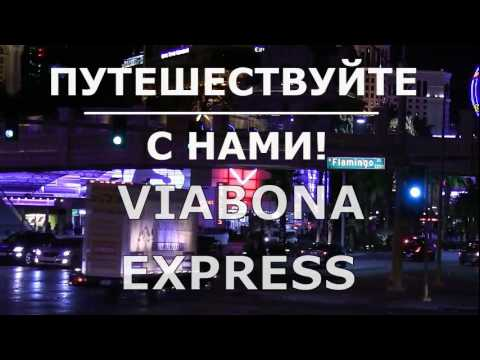 Киев Донецк  автобус