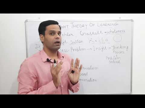 insight-theory-of-learning-by-deepak