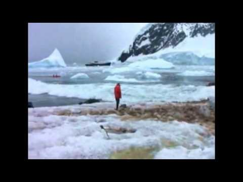 Glacier Collapses Into Ocean .avi