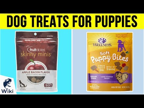 10-best-dog-treats-for-puppies-2019