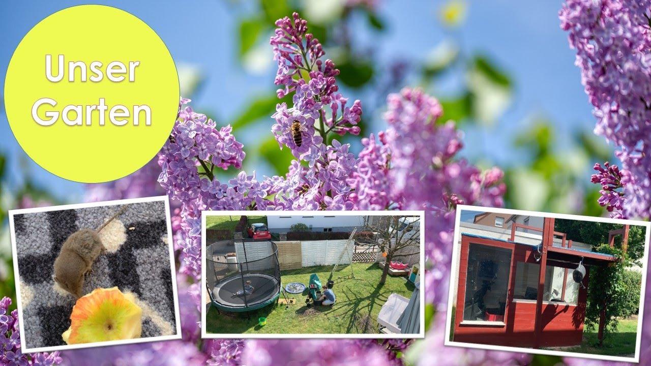 Unser Garten 🌺 | Palettenzaun | Aufbewahrung DIY | Mäusebesuch | Nickis Blog