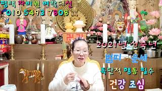 2021년 신축년 범띠  신년운세 (자비원 벼락대신)