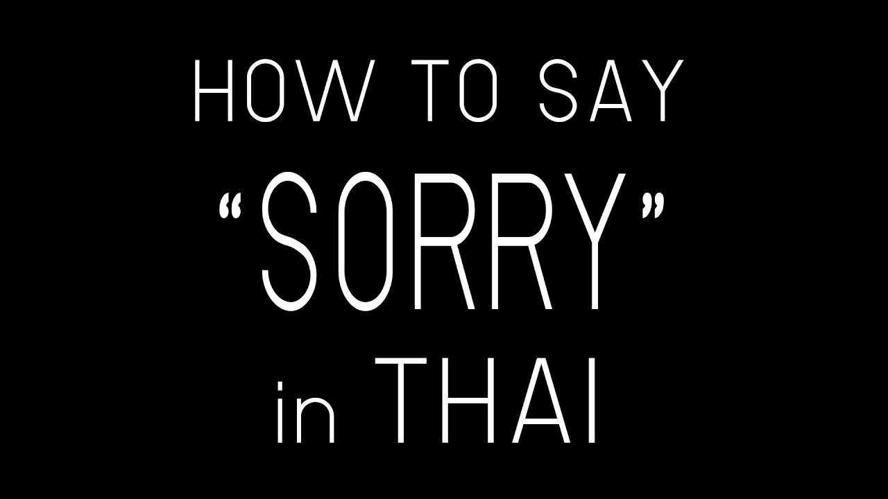 Learn Thai Sorry Inthai  How To Say Sorry In Thai Language