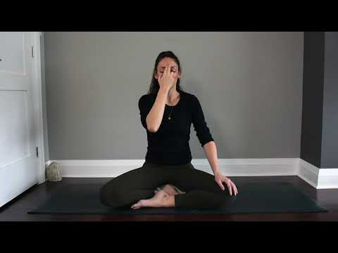 Guided Meditation - 10 Minutes