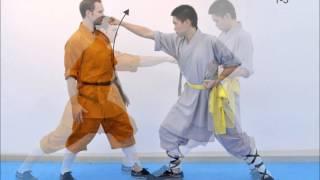 Serie técnica - Shaolin Luohan Shibashou - Yi Tiao Chuan