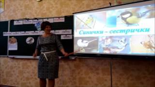 Відкритий урок Нечитайло Н.Б., вчительки початкових класів Бершадської ЗОШ 3