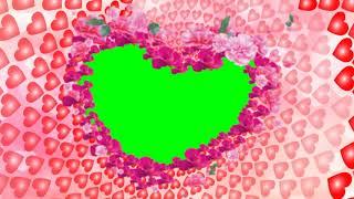 Beautiful Love Green-Frame-Video-Hintergrund || Sauber-Hochzeits-Hintergrund || DMX-HD-BG 301