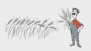 Польза гербицидов для вашего урожая