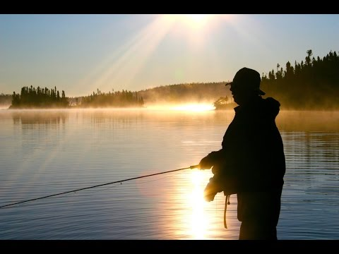 Labrador Landlocked Salmon | McKenzie River Fly Fishing Lodge