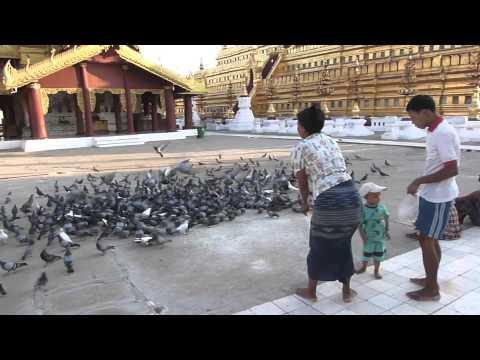 Tropical Heat Tour: Myanmar Video 1