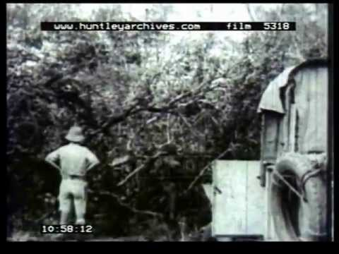 African expedition in the 1930's, archive film 5318
