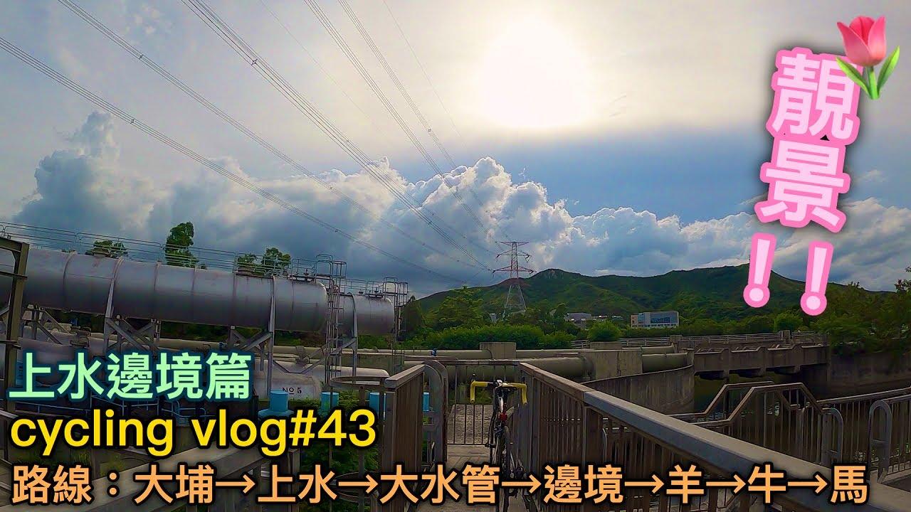 【cycling vlog】前往上水邊境!打卡聖地?!見到好多動物~│香港公路車EP.43(1440p)
