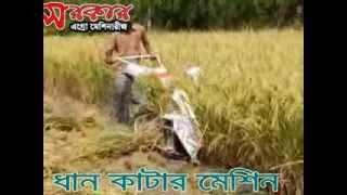 paddy reaper binder machine at bangladesh