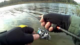 Рыбалка на Истринском водохранилище 1 ноября 2020