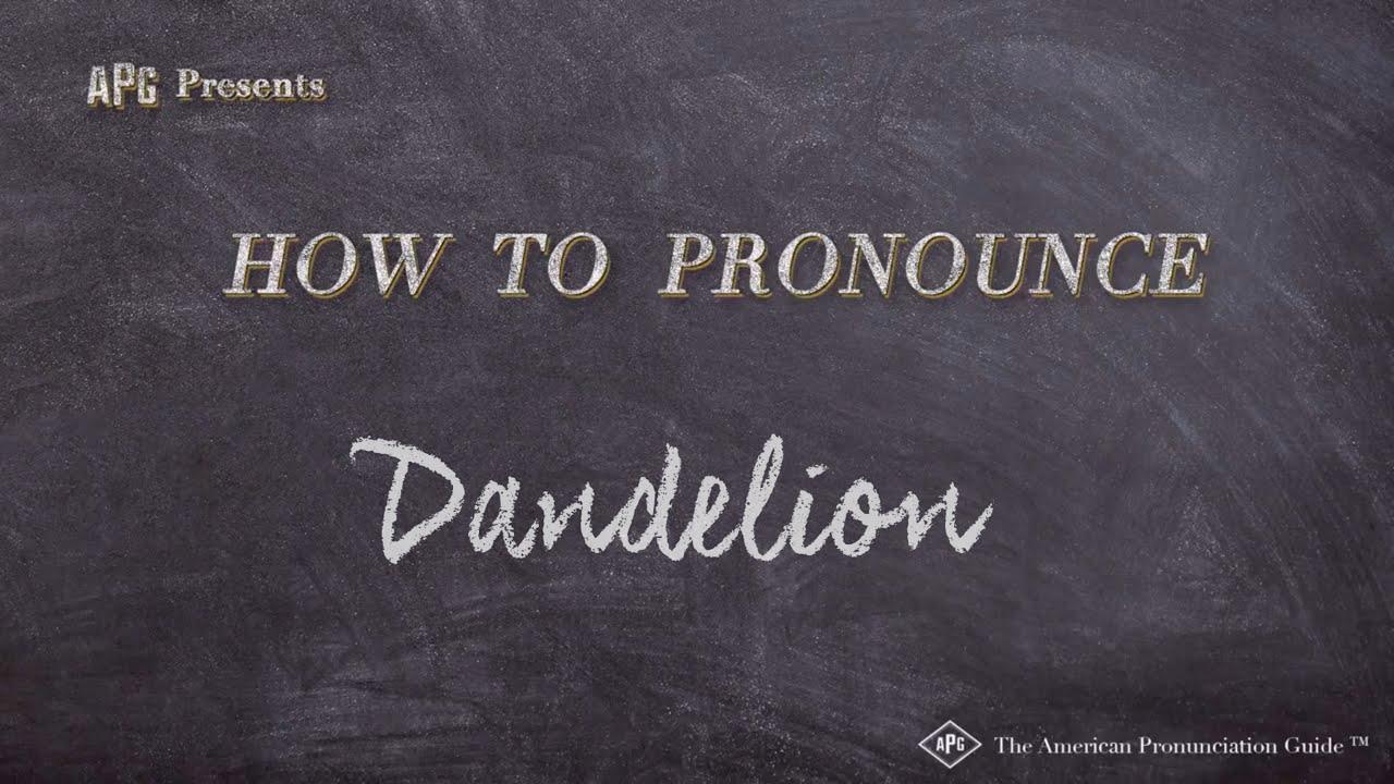 How to Pronounce Dandelion  Dandelion Pronunciation