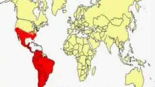 Latin American Parasitic Disease - Infesting U.S. - Blood Su