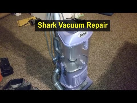 Shark Rotator Vacuum Access Brush Roller Belt Doovi