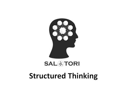 Personal Development   Guru Launches Saltori Structured Thinking