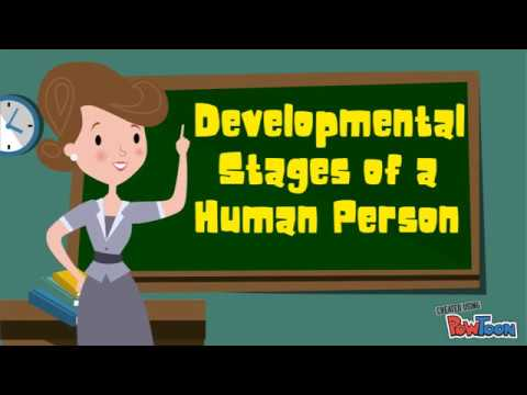stages-of-development-(personal-development---grade-11)