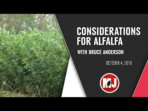 Considerations for Alfalfa | Bruce Anderson | October 04, 2019