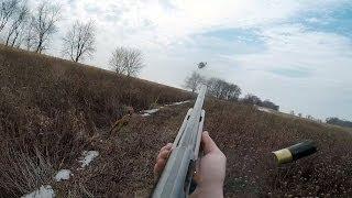 Spring Fever Pheasant Hunting