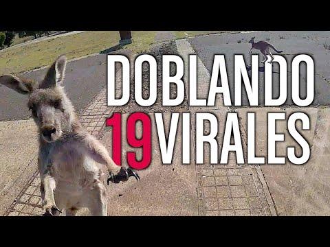 DOBLANDO VIRALES 19  *NUEVO*