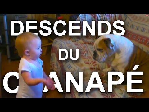 DESCENDS DU CANAPÉ -  PAROLE DE BÉBÉ (ft. Cynthia Alr)