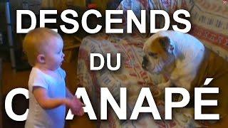 DESCENDS DU CANAPÉ -  PAROLE DE BÉBÉ (ft. Cynthia Alr) thumbnail