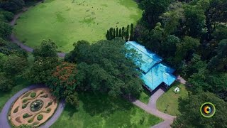 Tourist Attractions | Botanical Garden Peradeniya  | GoPlaces Sri Lanka
