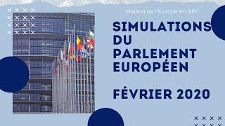Simulation du Parlement européen à Nevers - février 2020