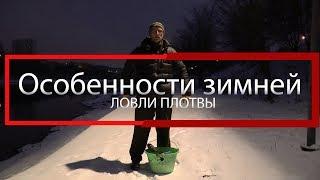 Особенности зимней ловли плотвы