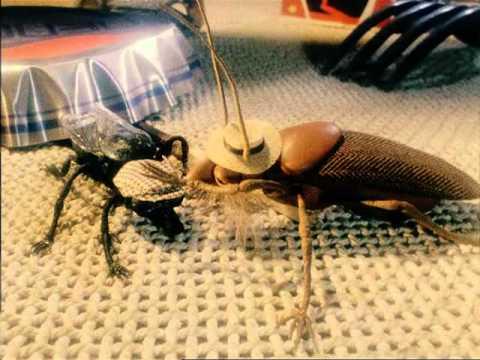 Весенняя муха 1986 г.