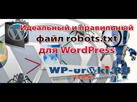 Настройка файла robots.txt для WordPress