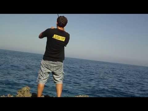 shore jigging - sunagrida kalamata (dentex)